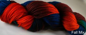 Fall Mix skein